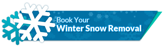 Book Your Winter Snow Removal